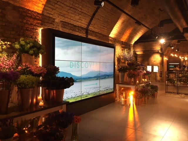 Showroom launch in London